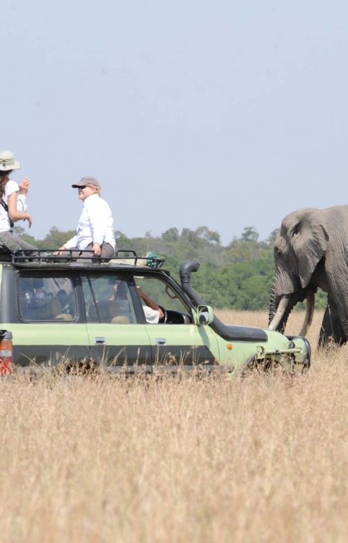 Kenya Camping Safari, African Family safaris - Amboseli National Park