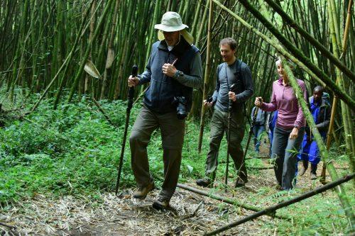 3 Day Rwanda Gorilla Safari