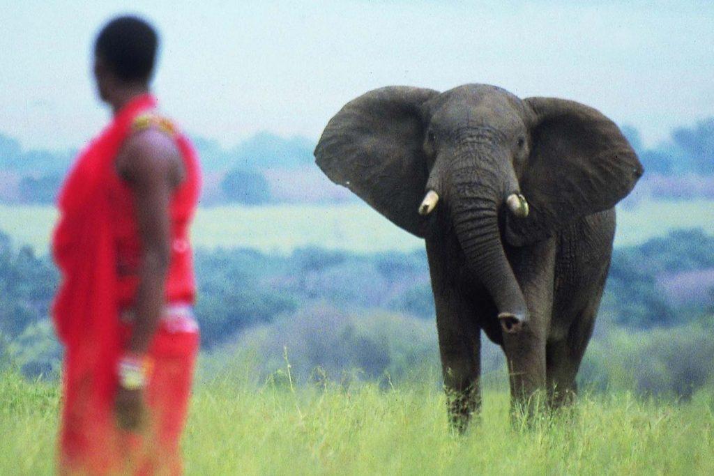 Kenya safaris in Masai Mara