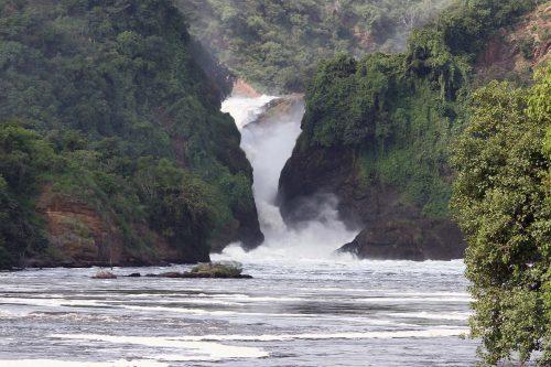 highlights of Uganda safari