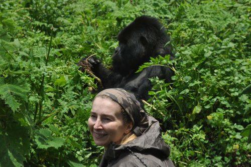 gorilla trekking in Uganda and rwanda experience