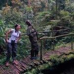 Natures Walks in Africa