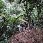 nuture walks in Kenya