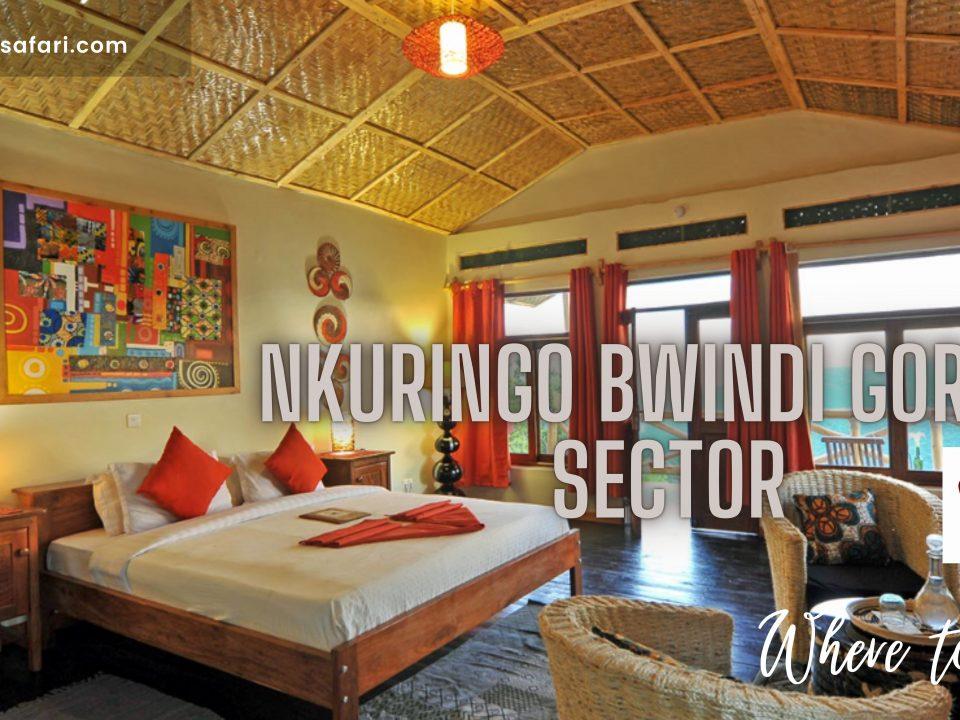 Accommodations around Nkuringo