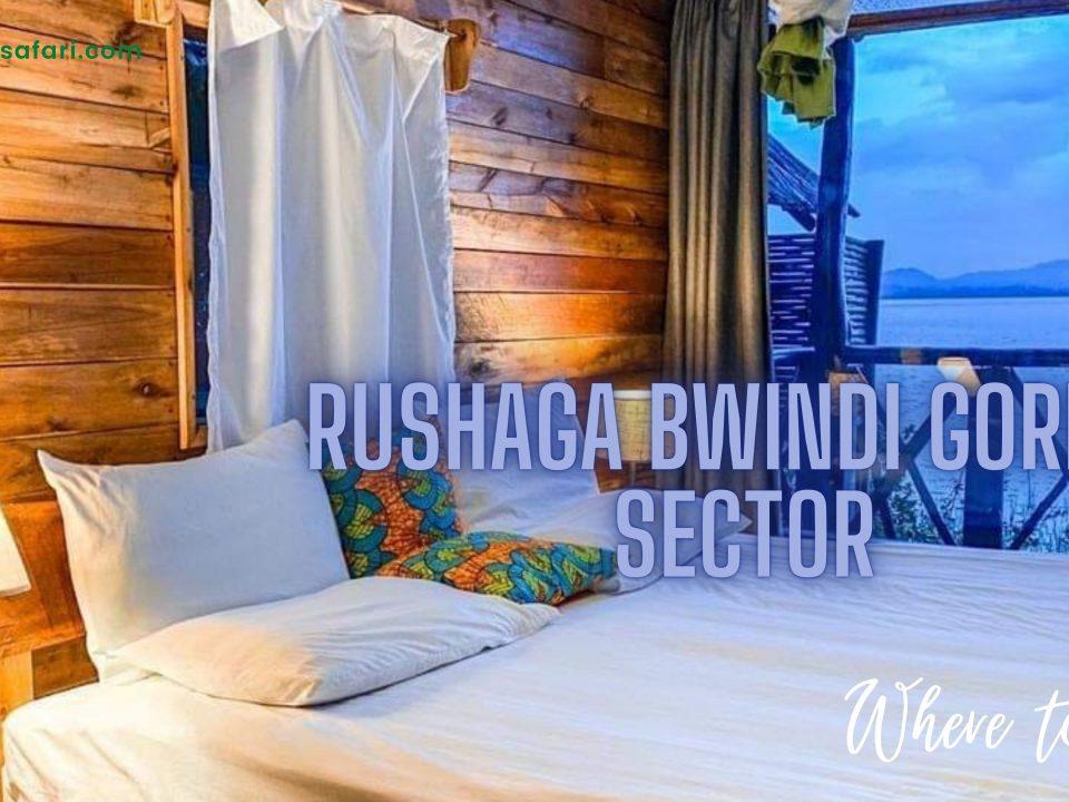 Accommodation in rushaga uganda
